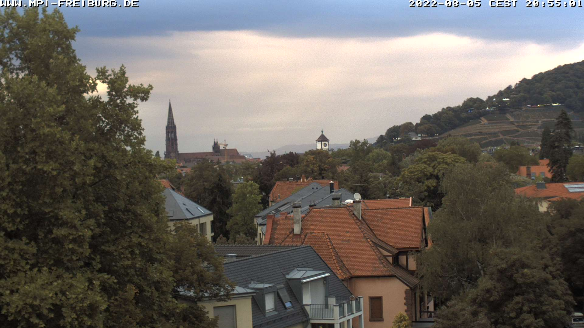 Live Bild der linken Webcam